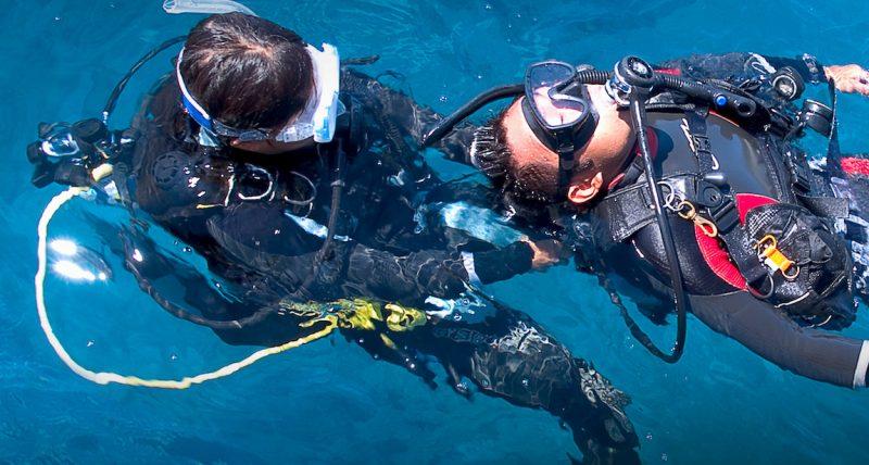 Rescue Diver | PADI